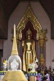 Buddha image in Phra Pathom Chedi. Phra Pathom Chedi pagoda, the landmark of Nakhon Pathom Province,Thailand Royalty Free Stock Photos