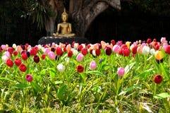 Buddha image with tulip Royalty Free Stock Photo
