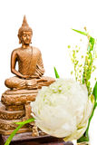 Buddha image on white. Offer sacrifice flower to buddha image on white background Stock Image