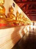 Buddha images in perfective. Buddha images row in Pisanulok Thailand Royalty Free Stock Photo
