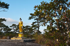 buddha immage national park statue Zdjęcia Stock