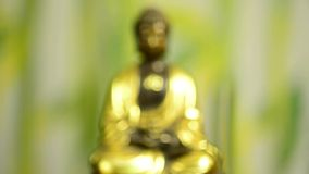 Buddha with incense stick stock footage