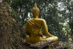 Buddha in the jungle Royalty Free Stock Photography