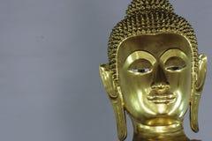 Buddha-köpfig Stockfotografie