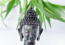 Buddha-Kopf stockbild