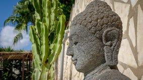 Buddha-Kopf im Garten stockfoto