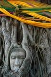 Buddha-Kopf umgeben von Roots Stockbild