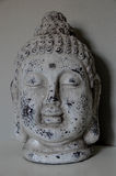Buddha-Kopfinnenausstattung Stockbilder