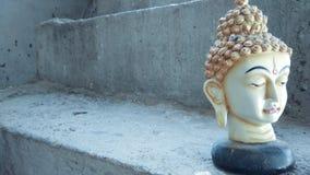 Buddha-Kopfstatuenhintergrund Lizenzfreies Stockbild