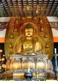 Buddha, Kyoto, Japan royaltyfri fotografi