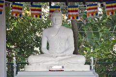 Buddha in Lumbini, Nepal Royalty Free Stock Photography