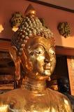 Buddha mässingsHead framsidaflank Royaltyfri Bild