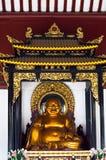 buddha maitreya Royaltyfri Fotografi