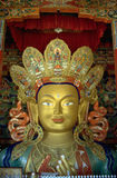 Buddha Maytraya, Thikse, Ladakh, India Immagini Stock