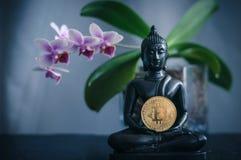 Buddha med bitcoin Royaltyfri Bild