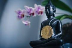 Buddha med ethereum Royaltyfri Bild