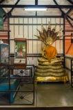Buddha med 7 head Naga på Wat Chet Yod Arkivfoton