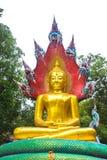 Buddha med konung av naga 02 Royaltyfri Fotografi