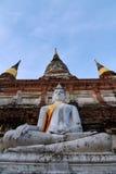 Buddha meditating Fotos de archivo libres de regalías