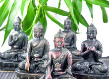 Buddha Meditating. Five forms of Buddha meditating with isolated background royalty free stock photo