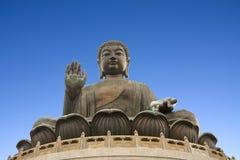 Buddha meditation Royalty Free Stock Photos