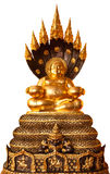 Buddha in meditation isolated Royalty Free Stock Images