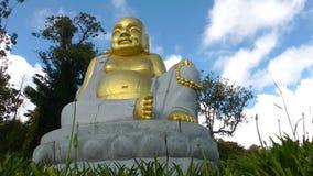 Buddha Meditation and Meditation Religion stock video