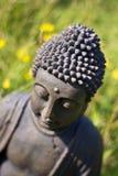 Buddha Meditation. Buddha statue meditating on a meadow stock images