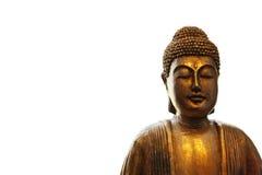buddha meditera Royaltyfria Bilder