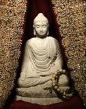 buddha meditera Royaltyfri Fotografi