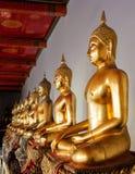 buddha meditera Arkivfoto