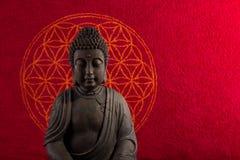 Buddha medytacja Zdjęcie Royalty Free