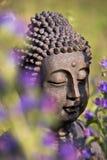 Buddha medytacja Zdjęcia Stock