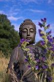 Buddha medytacja Obraz Royalty Free