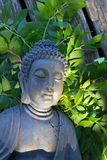 Buddha medytacja Obrazy Stock