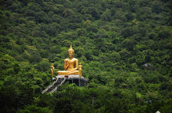 Buddha. In the middle of the forest Royalty Free Stock Images