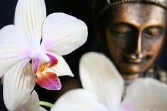 Buddha mit Orchidee Lizenzfreies Stockfoto