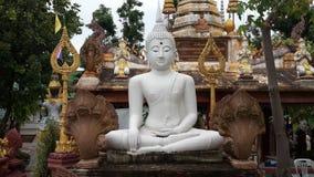 Buddha monk Stock Photo