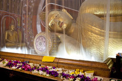 Buddha in mosquito net, sri lanka Stock Photography