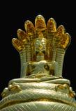 Buddha Nacprk Arkivfoton