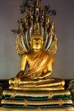 Buddha and Naga. Golden sculpture of meditating Buddha and naga Stock Photography