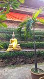 Buddha no templo imagens de stock