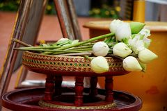 Buddha Oblation Stock Photos