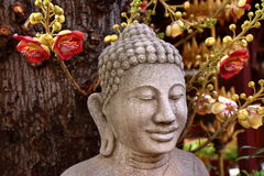 Buddha och det Bodhi trädet Arkivbild