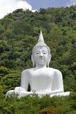 Buddha och natur. Arkivbild