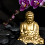Buddha with Orchid Royalty Free Stock Images