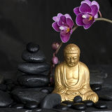Buddha with Orchid Stock Images