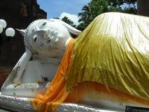 buddha på ayutthaya Royaltyfri Foto