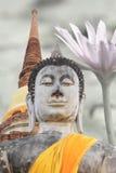 Buddha på stupabakgrund Royaltyfria Bilder