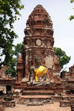Buddha and pagoda Royalty Free Stock Photo